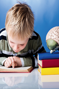 Child bent over open book, finger on page. Next to him model brain on top of books