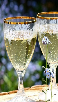 Flower in front of two wine glasses containing sparkling wine
