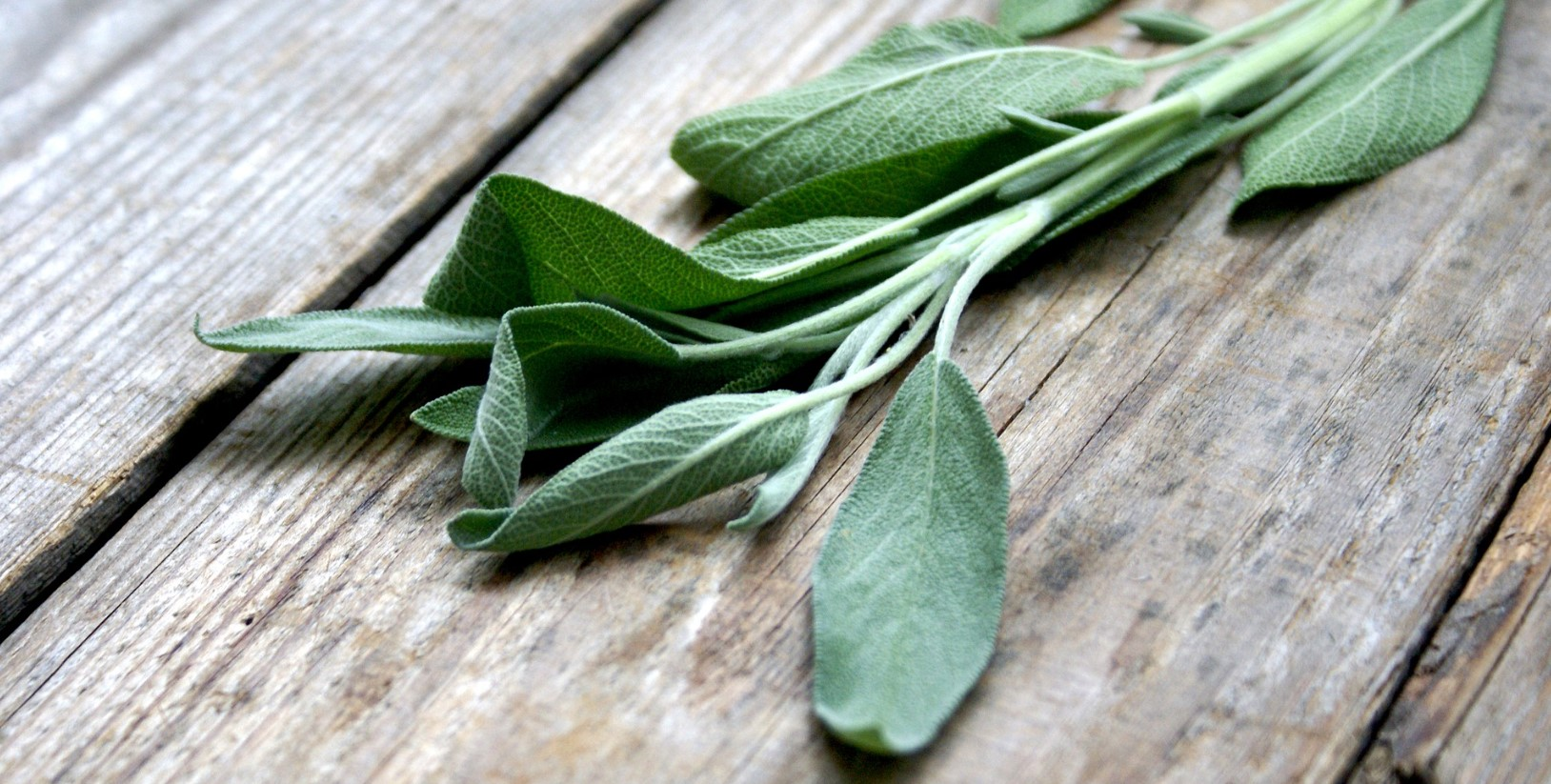 Sage leaves on wooden table